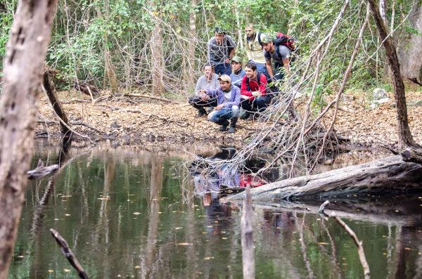 Alumnos a orilla de un río en nuestro curso de Mexico