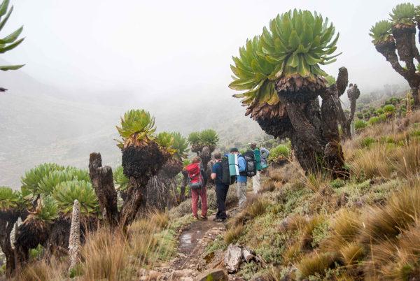 Curso de fotografía en el Monte Kenia